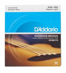 Daddario akustisen basson kielisarja