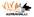 ViVa -koirahallin vuokraus ja kurssit