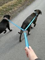 Grip kahden koiran monitoimitalutin