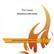 Outi Cappel: Profeetallinen syksy 2008