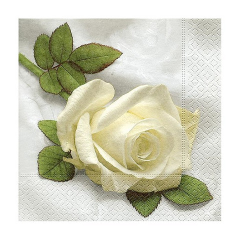 Servetti - Kahvi, Ruusu