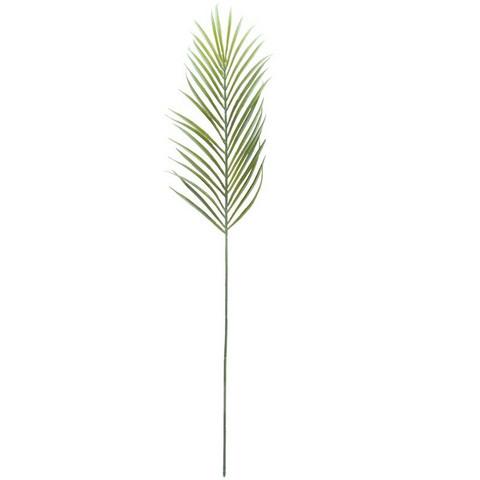Finnmari - Saniainen, oksa 70 cm