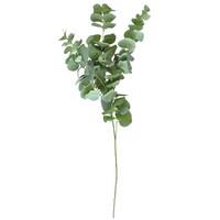 Finnmari - Eukalyptus oksa