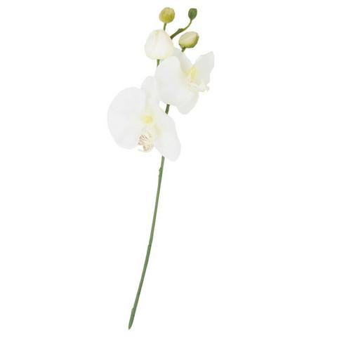 Finnmari - Orkidea oksa, valkoinen