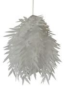 Kattovalaisin - Oriva, lehti valkoinen