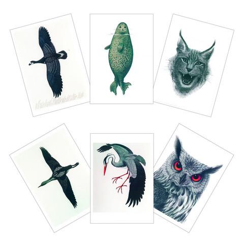 Erik Bruunin kuvittamat postikortit (A6-koko)