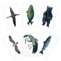 Erik Bruunin kuvittamat postikortit (A5-koko)