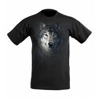Sudenpää t-paita