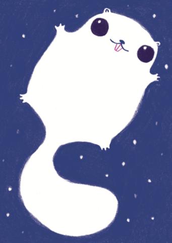 Norppa ja kaverit: Liito-orava ja tähdet