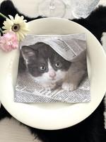 Paper napkin, cat