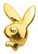 Hammaskoru- Bunny, kulta