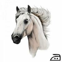 Silitettävä siirtokuva hevonen