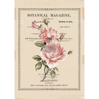 Siirtokuva Vintage Paint - Beautiful Botanist