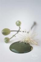 Olive Green 700ml