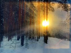 Pikku led-taulu auringon kajastus