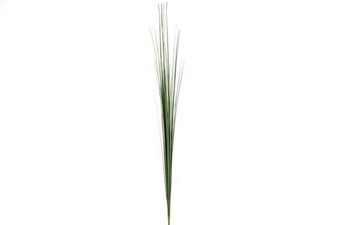 Heinäkimppu, Keyon, vihreä
