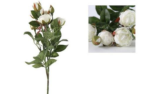 Ruusukimppu, Shakira, valkoinen