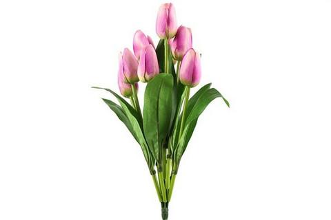Tulppaanikimppu, pinkki