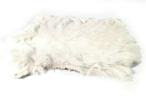 Aito kanintalja, valkoinen