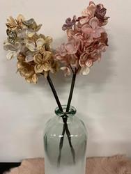 Hortensia, glitter roosa