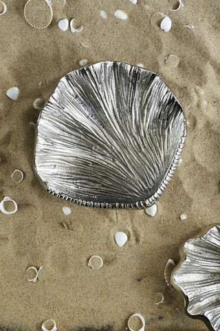 Sea Shell Treasure Decoration M