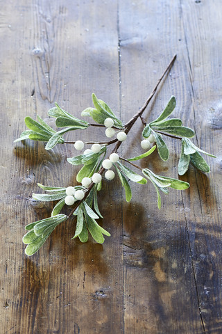 Magic Mistletoe Branch