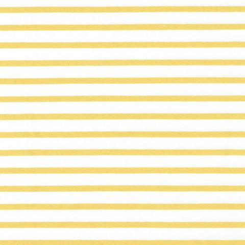Valko-keltainen raitatrikoo