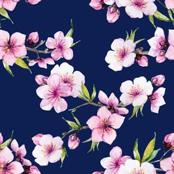 Sininen Kirsikan kukka, trikoo