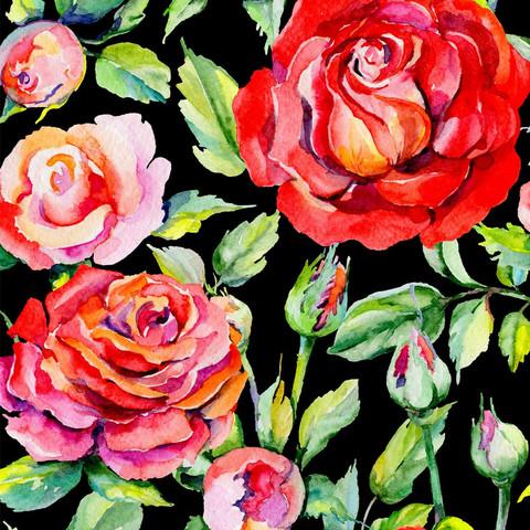 Puna Ruusut trikoo