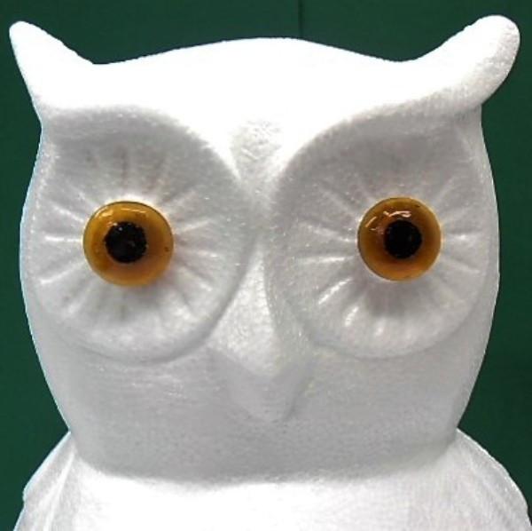 Pöllön Silmät