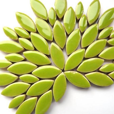 Keraamiset lehdet, Kiwi, 50 g