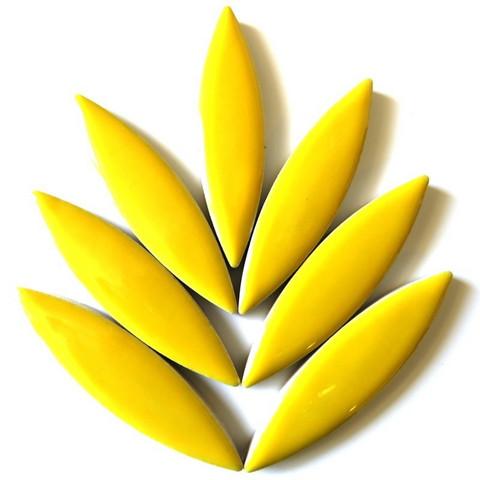 Keramiska ellips, Citrus Yellow, 8 st
