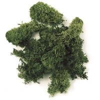 Iceland moss, 30 g, Dark Green