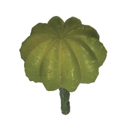 Ball cactus, 5 x 6.5cm