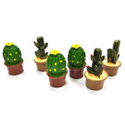 Kaktusar, blandade, 3 cm, 6 st