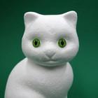 Cats Eyes, 2 pcs, 8mm, Plastic material