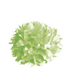 Pom-pom, Koristepallo 3 kpl, halk. 35 cm, evergreen
