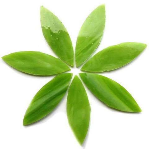 Isot terälehdet, Green Tea, 7 kpl