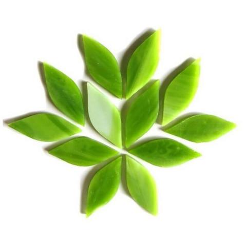 Small petals, Green Tea, 12 pcs