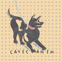 Cave Canem 50x50 cm