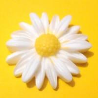 Daisy, 2 pcs