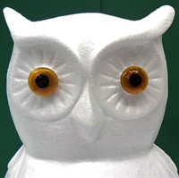 Owl Eyes, 2 pcs, Glass Material