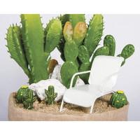 Columniform cactus, 11,5 x 6,5 cm