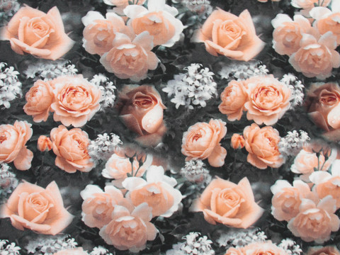 Trikoo Peach Roses