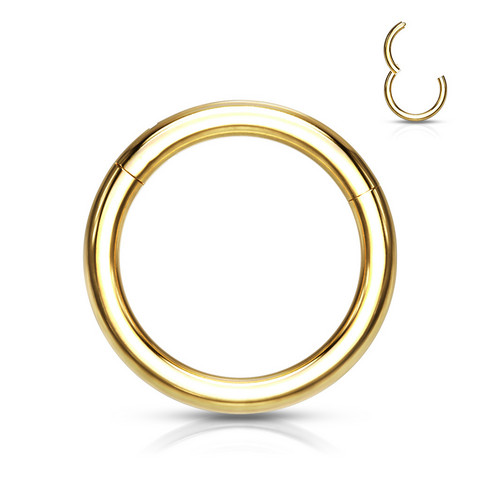 Lävistysrengas 1,2mm, Implant Grade Titanium Segment Rings in Gold