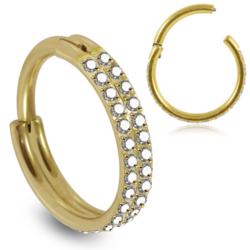 Lävistysrengas, Premium Double Line CZ Segment Clicker in Gold