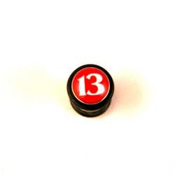 13-feikkiplugi