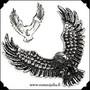 Kirurginteräsriipus,  Eagle (kotka)