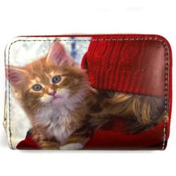Lasten lompakko, Talvinen kissa