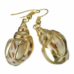 Korvakorut, PAPARAZZI|Gold and Brown Seashell Earrings